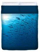 Blue Fusiliers, Similan National Marine Duvet Cover
