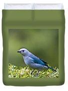 Blue-grey-tanager Duvet Cover
