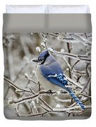 Blue Jay - D003568 Duvet Cover