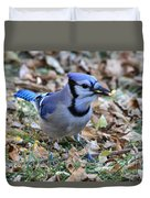 Blue Jay With A Piece Of Corn In Its Mouth Duvet Cover