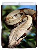 Boa Constrictor Boa Constrictor Duvet Cover