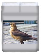 Boat Tail Grackle Duvet Cover