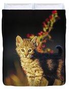 Bobcat Kitten Standing On Log North Duvet Cover