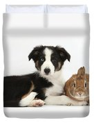 Border Collie Pup And Netherland-cross Duvet Cover