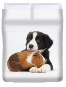 Border Collie Pup And Tricolor Guinea Duvet Cover