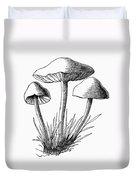 Botany: Mushroom Duvet Cover