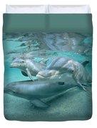Bottlenose Dolphin Underwater Trio Duvet Cover