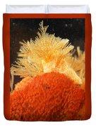 Bowerbanks Halichondria & Spiral-tufted Duvet Cover