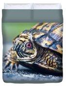 Box Turtle 1 Duvet Cover