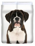 Boxer Pup Duvet Cover by Mark Taylor