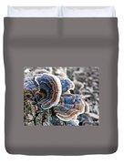 Bracket Fungi - Fungus Duvet Cover