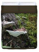 Bracket Fungus Duvet Cover