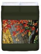 Bright Red Maple Leaves Against An Oak Duvet Cover