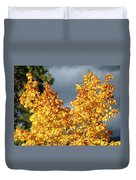 Brilliance Before The Storm Duvet Cover