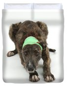 Brindle Lurcher Wearing A Bandage Duvet Cover