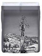 Bristlecone Pine - High Sierra Duvet Cover