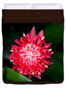 Bromeliad Bloom Duvet Cover by Rich Franco