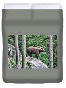 Brown Bear 208 Duvet Cover