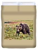 Brown Bear 210 Duvet Cover