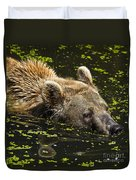 Brown Bear Swimming Duvet Cover