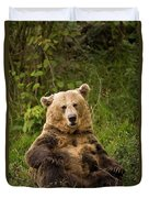 Brown Bear Ursus Arctos, Asturias, Spain Duvet Cover