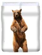 Brown Bear Ursus Arctos Duvet Cover
