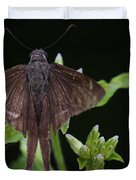 Brown Butterfly Dorantes Longtail Duvet Cover