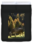 Brown Cow In Valle Lunga Duvet Cover