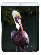 Brown Pelican Islamorada Duvet Cover