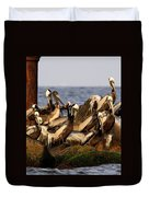 Brown Pelicans - Beauty Of Sand Island Duvet Cover