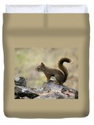 Brown Squirrel In Spokane Duvet Cover
