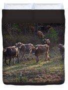 Brown Swiss Cows Coming Home Duvet Cover