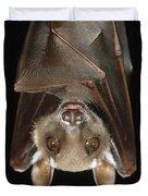 Buettikofers Epauletted Bat Epomops Duvet Cover