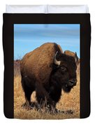 Buffalo Duvet Cover