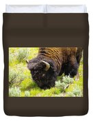 Buffalo Grazing Duvet Cover