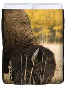 Buffalo Grazing Duvet Cover by Philippe Widling