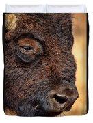 Buffalo Up Close Duvet Cover
