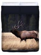 Bull Elk Cervus Elaphus Duvet Cover