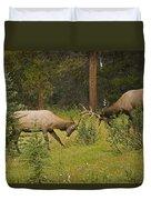 Bull Elk Fighting, Banff National Park Duvet Cover by Philippe Widling