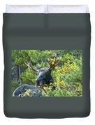 Bull Moose At Dusk Duvet Cover