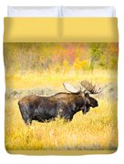 Bull Moose In Autumn Duvet Cover