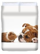 Bulldog Pup Face-to-face With Guinea Pig Duvet Cover