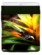 Bumble Bee Dart Frogs Duvet Cover