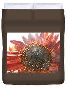 Burgundy Sunflower In Sun Rays Duvet Cover