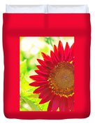 Burgundy Sunflower Duvet Cover