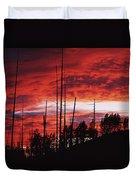 Burnt Trees Against A Sunset Duvet Cover