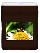 Busy Bee Collecting On Echinacea Pow Wow Duvet Cover