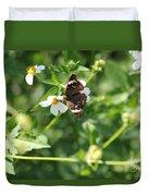 Butterfly 25 Duvet Cover