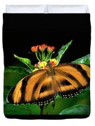 Butterfly Dryadula Heliconius Feeding Duvet Cover