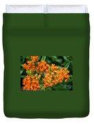Butterfly Milkweed Duvet Cover